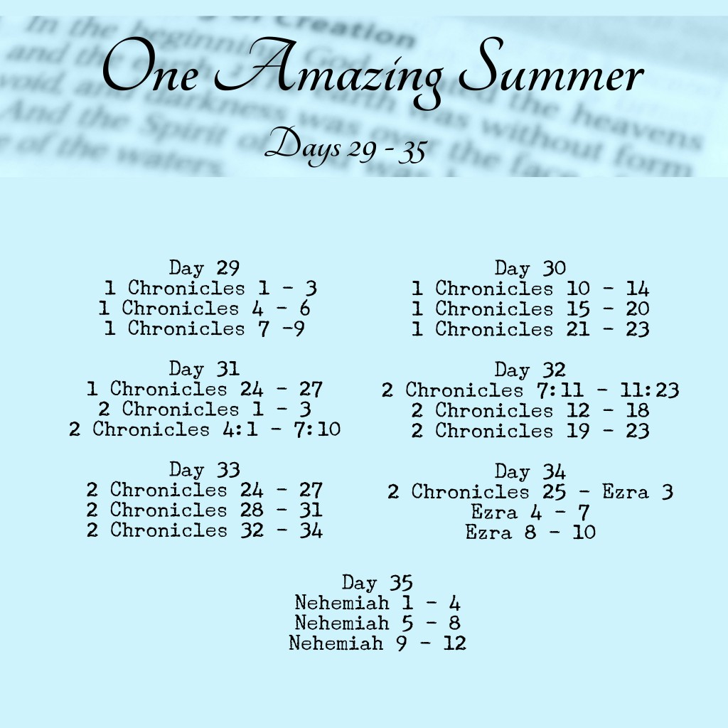 Reading Schedule Bible in 90 Days One Amazing Summer www.terilynneunderwood.com