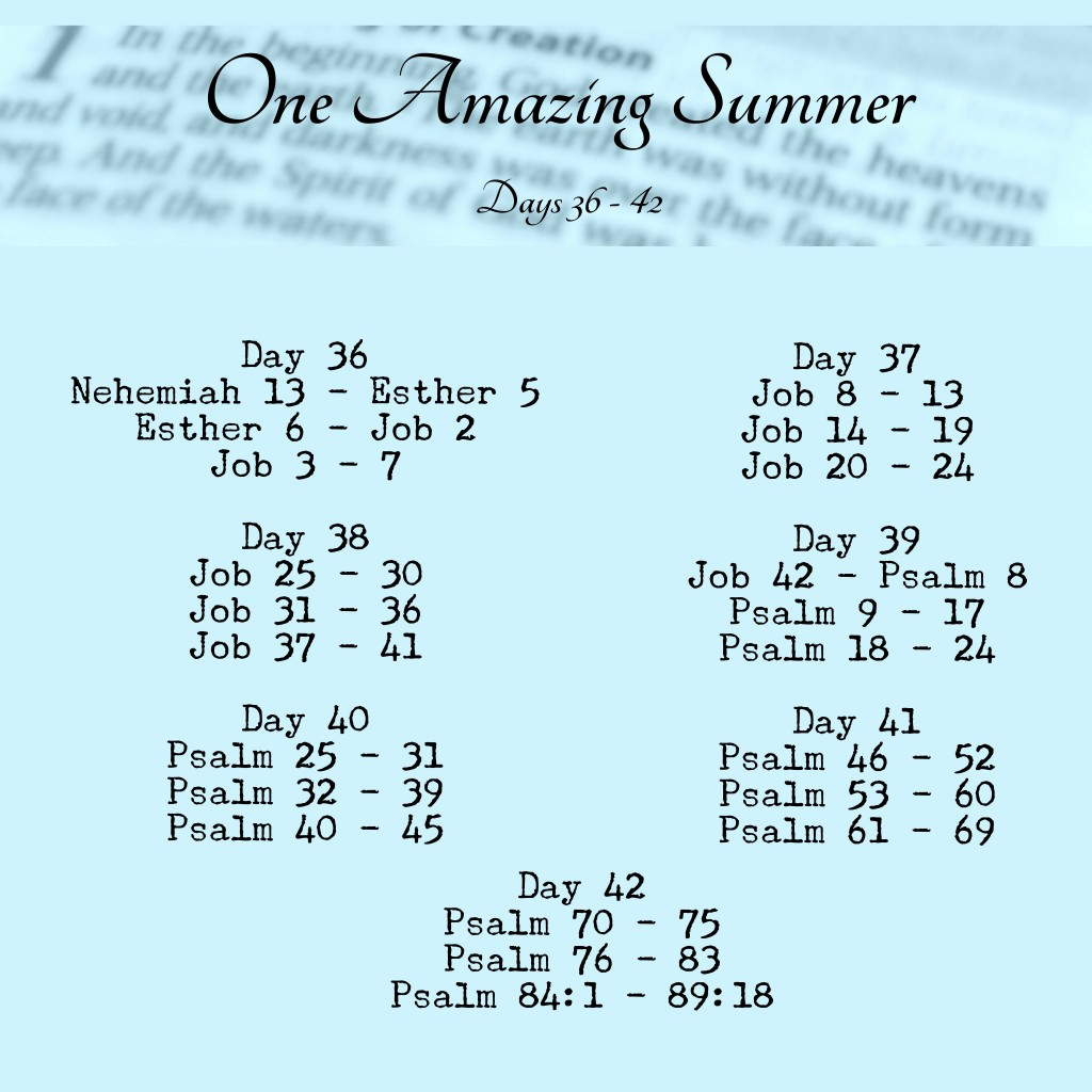 One Amazing Summer #B90Days Readings www.terilynneunderwood.com