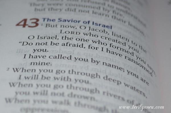 everyday matters bible for women text www.terilynneunderwood.com