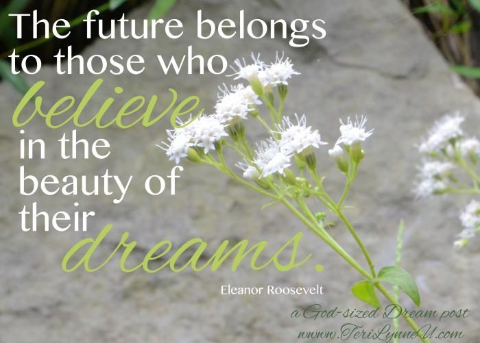 believe in the beauty of dreams www.terilynneunderwood.com