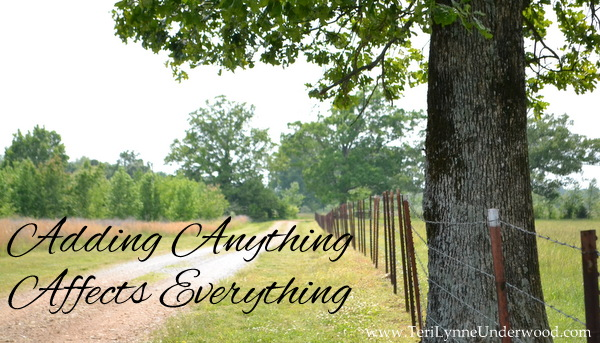 Adding Anything Affects Everything www.terilynneunderwood.com
