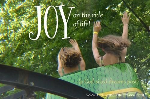 JOY on the ride of life www.TeriLynneUnderwood.com