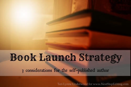 book launch strategy || www.terilynneunderwood.com/author-services