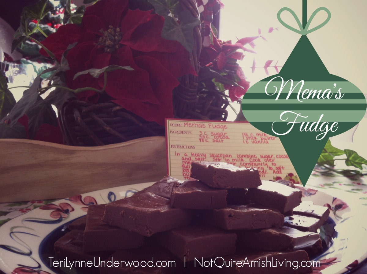 Mema's Fudge || TeriLynneUnderwood.com for NotQuiteAmishLiving.com