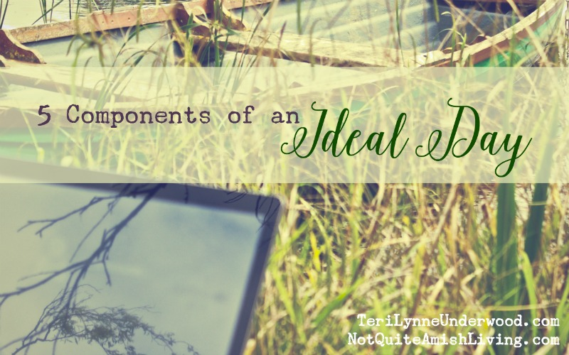 5 Components of an Ideal Day