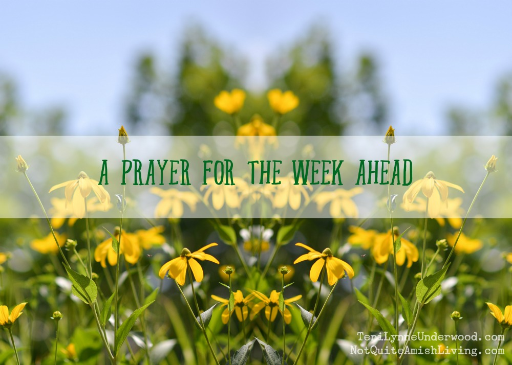 A Prayer for the Week Ahead based on 2 Timothy 4:22