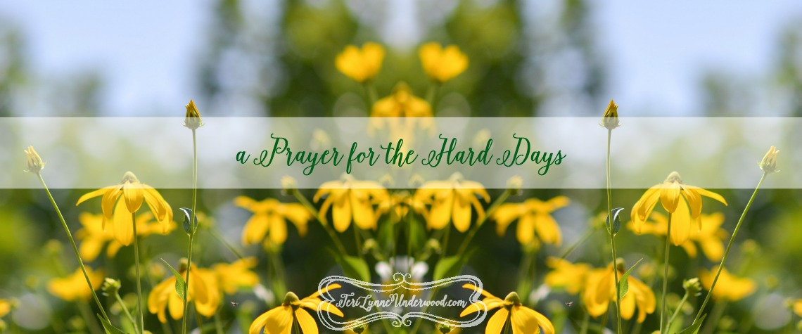 a prayer for the hard days