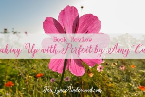 Breaking Up with Perfect by Amy Carroll {book review}