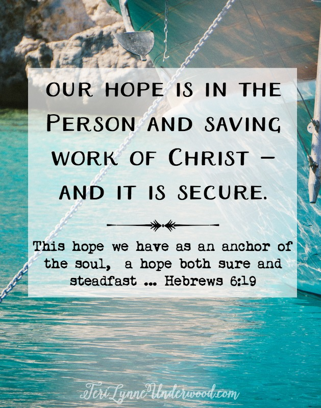 Our hope is the person and saving work of Christ, imaged here as our High Priest. Christ Himself is the anchor … He provides the stability in the storms of our lives.  Why is this counter cultural? What makes hope stand out in our world? So few people have it!