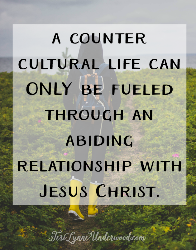 counter cultural life can only be fueled through an abiding relationship with Christ {John 15:1-11}. We can't live with wisdom or commitment or generosity unless we've encountered the One who is the beginning of wisdom, who reveals true commitment, and whose life was the supreme example of generosity. There is no way for us to serve others or forgive others outside of Jesus at work in us, showing us what it means to serve with humility and to forgive even when we aren't sure how. Only through Christ and His example of dependence on the Father can we understand the value of living in dependence on God, on others, and with the church. Certainly outside of Jesus and hope He has given us we can never truly live hope-filled lives.