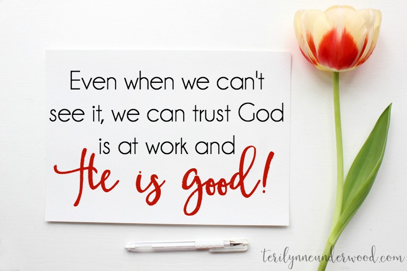 God is a good, good Father. Even when we can't see it, we can trust God is at work and that He is good.