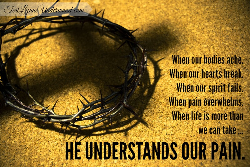 Holy Week Meditations:  A God Who Understands Our Pain
