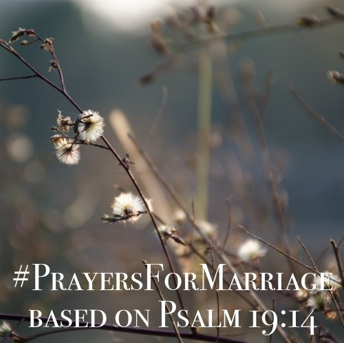 31 Verses to Pray for Your Marriage {Psalm 19:14}