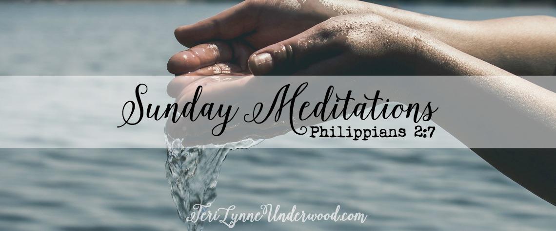 Sunday Meditation    Philippians 2:7