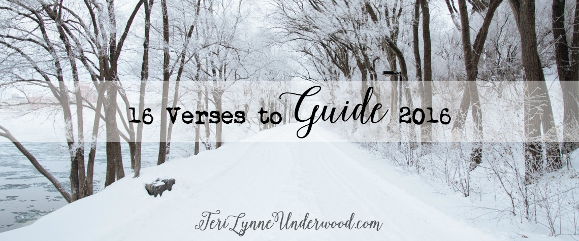 16 verses to guide and shape my plans and priorities for 2016
