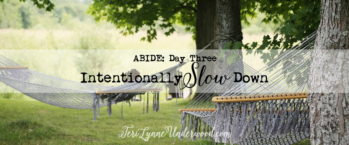 {ABIDE Day 3} 10 Ways to Intentionally Slow Down