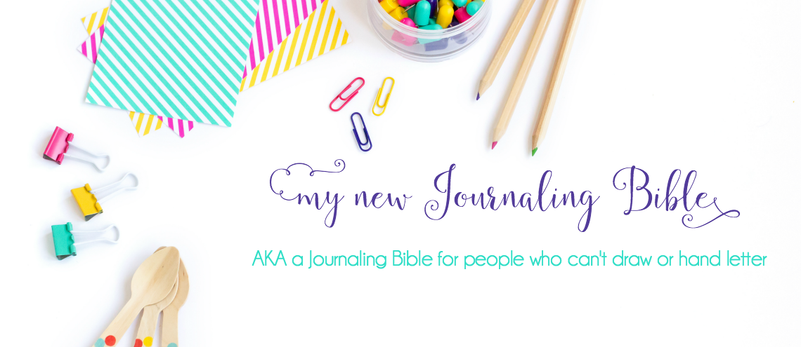 My New Journaling Bible || HCSB Illustrator's Notetaking Bible
