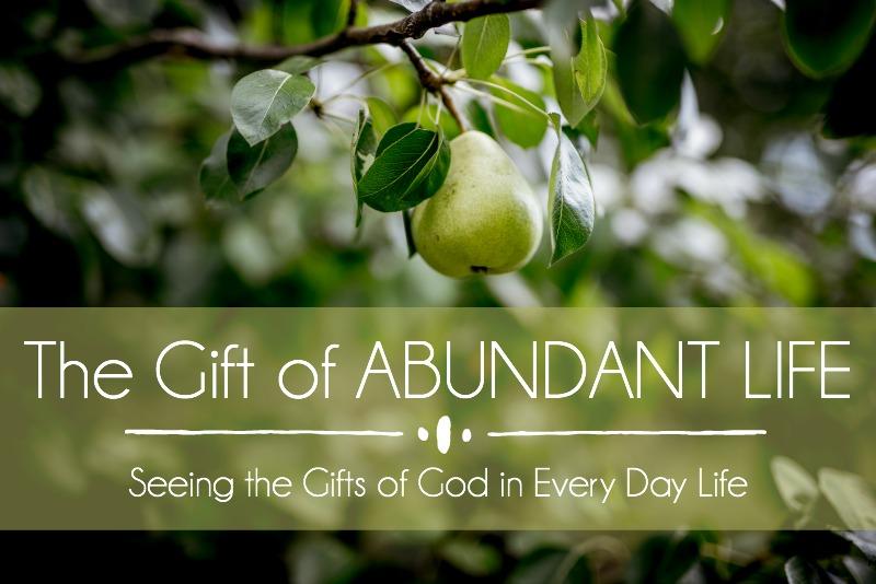 The Gift of ABUNDANT LIFE