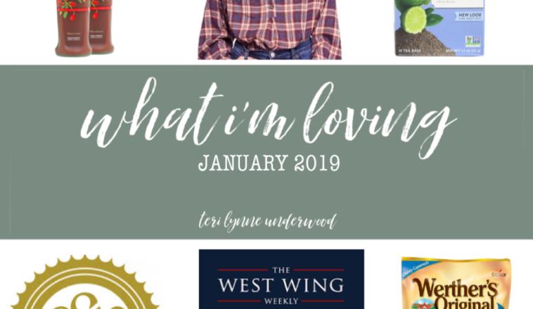 10 Things I'm Loving {January 2019}