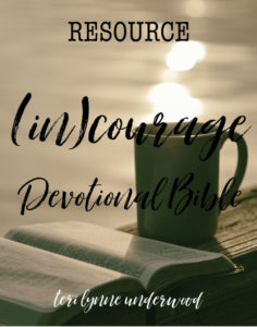 The (in)courage Devotional Bible is a great resource with over 300 devotions written by 100+ women in various seasons of life, ten reading plans, Women of Courage highlights, and more.